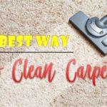 Best Way to Clean Carpet [3 Vital Steps]