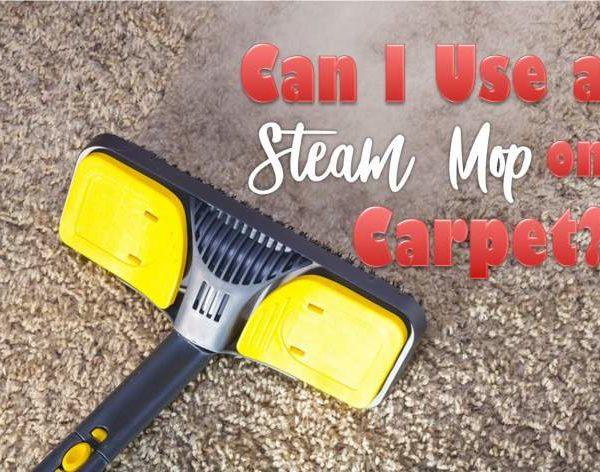 steam mop on carpet