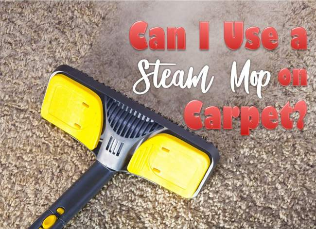 steam mop on carpet