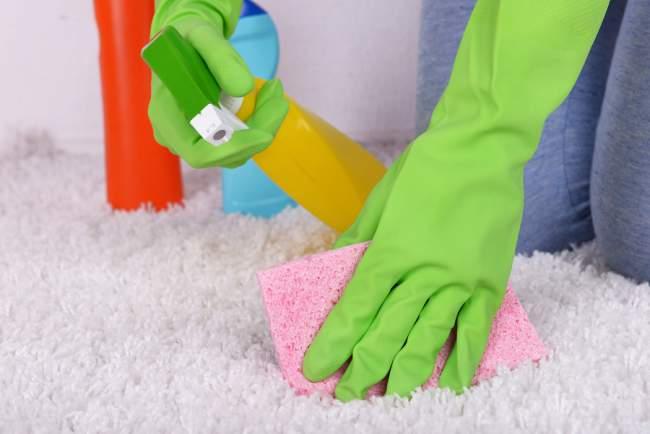pet odor cleaner or spray