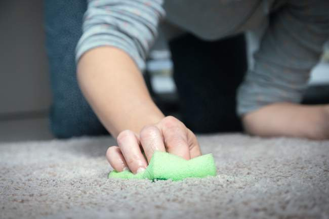 easy to clean carpet