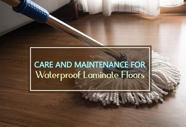 maintenance for waterproof laminate floors