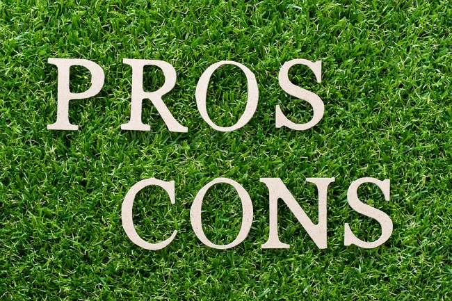 pros and cons dreamweaver carpet