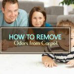 How to Remove Odors from Carpet (5 Easy Ways)
