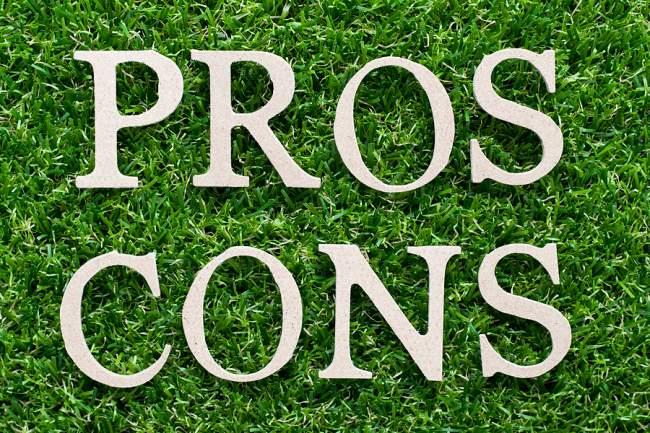 pros and cons karastan carpet