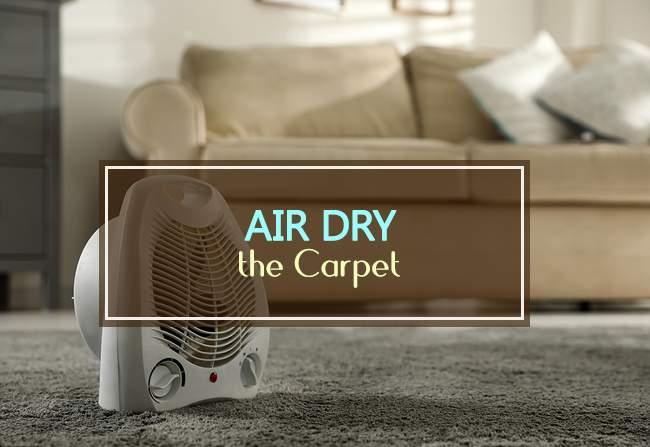 air dry the carpet