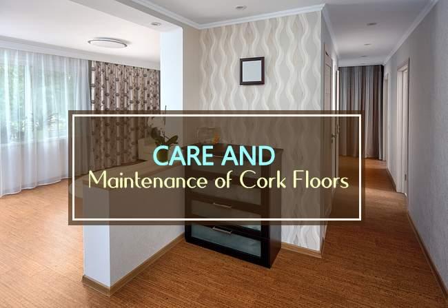 care and maintenance cork floors