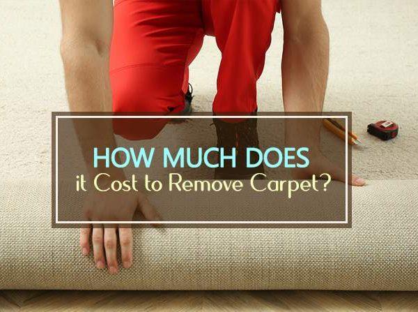cost to remove carpet
