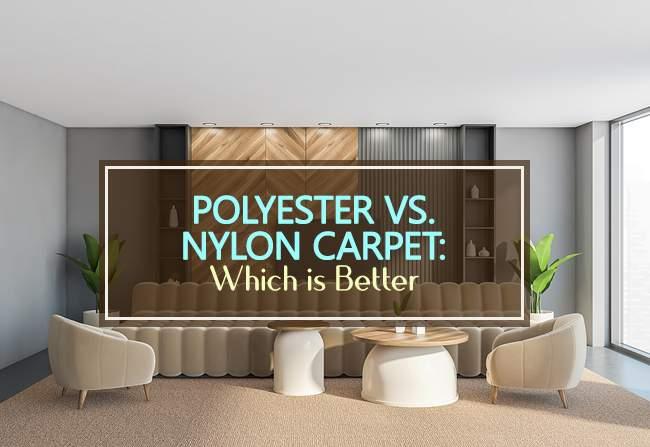 polyester vs nylon carpet
